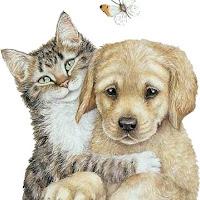 CatDogs6.jpg