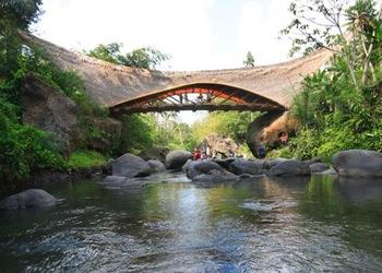 bambu-material-sostenible-biocosntruccion-arquitectura-sostenible