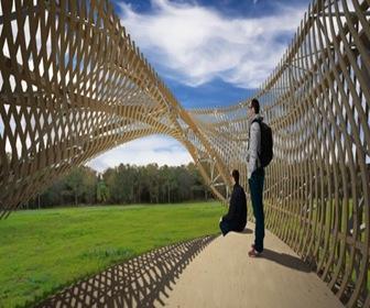 contemplay-pavilion-.
