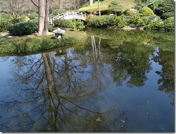 Botanical Garden 036