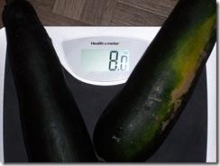 zucchini 7.15.09 002