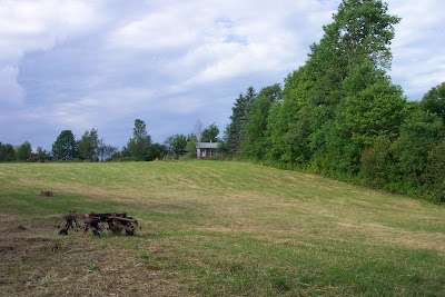 Vermont Ski House two acre yard