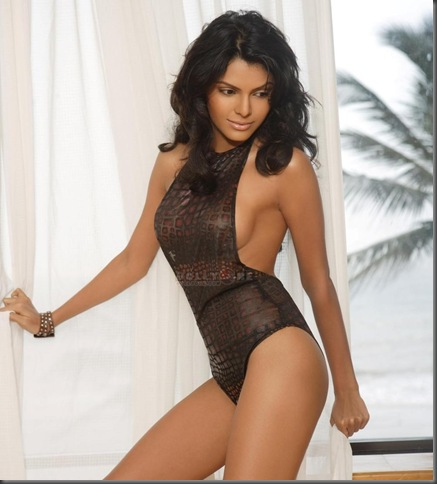 01 sherlyn chopra sexy bollywood actress pictures200110