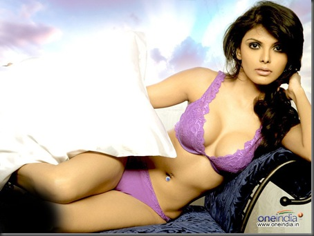 03 sherlyn chopra sexy bollywood actress pictures200110