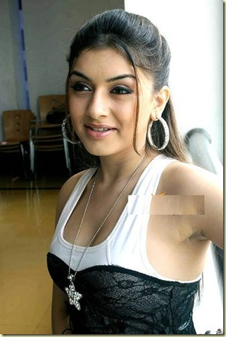 03 Hansika Motwani hot bollywood actress pictures 041109