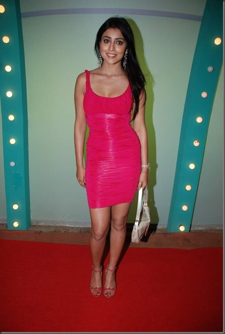 shriya sexy kollywood acterss pictures0809101