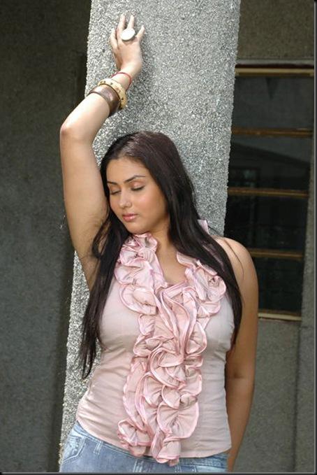 namitha-hot-images(11)