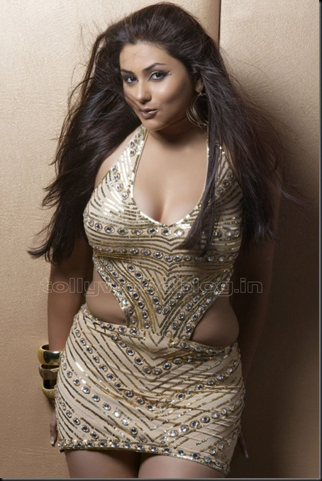 Namitha-hottest-photo-shoot-010
