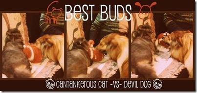 best buds2