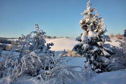 vinter1a