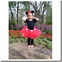 draft_lens12559081module113451991photo_1281078726Minnie_Mouse_Tutu_costume