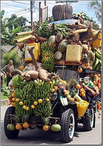 transporte de mercancias cosasdivertidas (21)