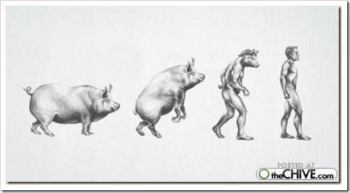 cosasdivertidas evolución (1)