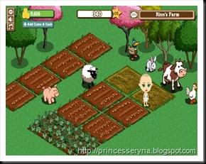 kebun ladang