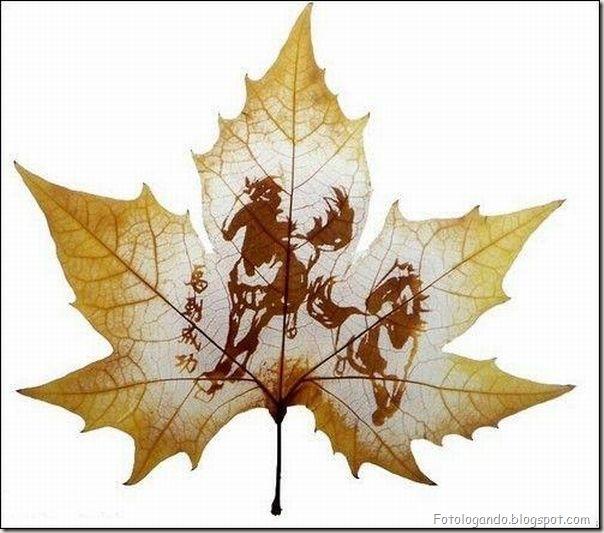 Desenho em folhas secas (11)