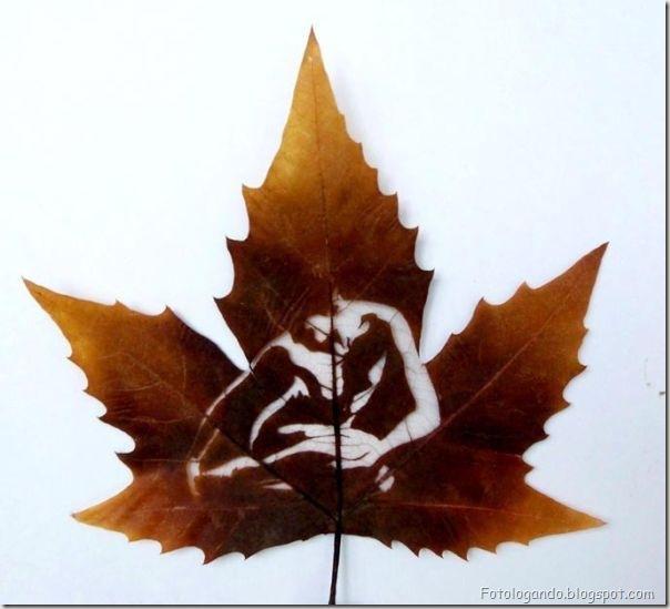 Desenho em folhas secas (7)