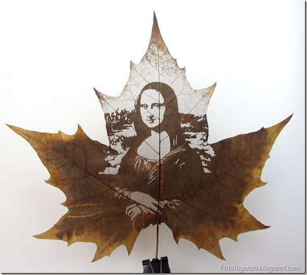 Desenho em folhas secas
