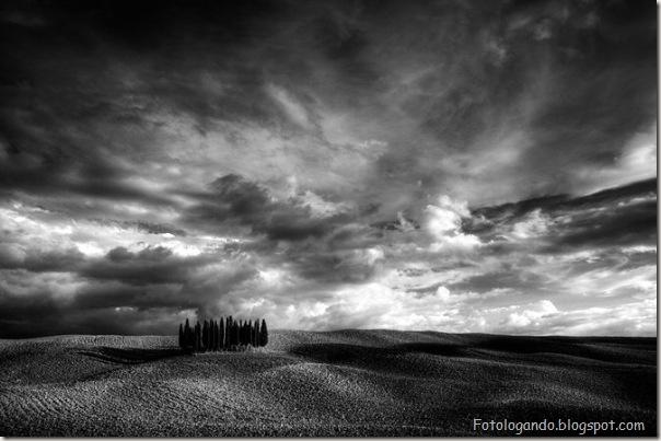 Fotos artísticas em preto e branco (27)