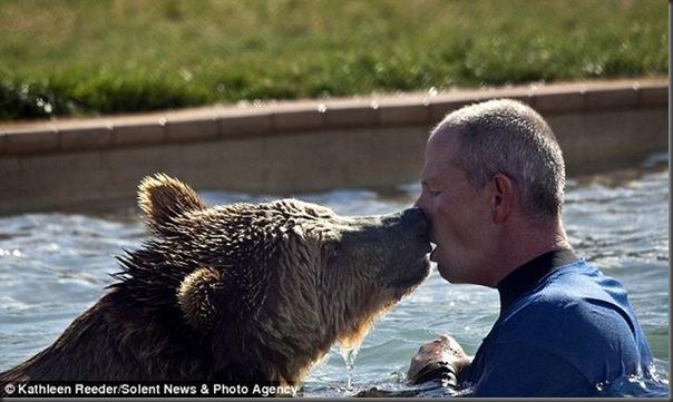 Urso brincando com treinador no zoológico (3)