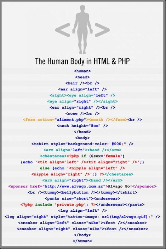 HTML do Corpo Humano