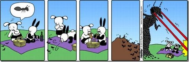 O coelho mais azarado do Mundo (36)