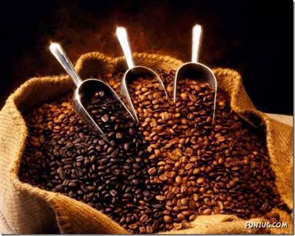 Fotos para amantes do café