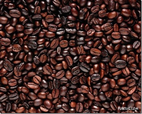 Fotos para amantes do café (2)
