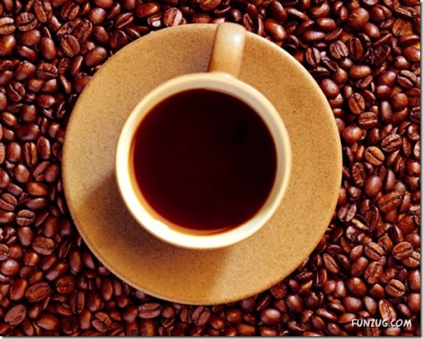 Fotos para amantes do café (7)
