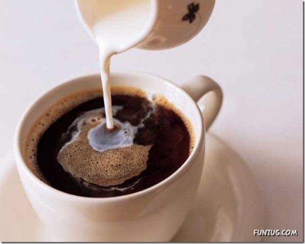 Fotos para amantes do café (9)