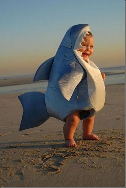 Bebê tubarão