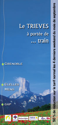 The contributions of the servise for the town of Grenoble