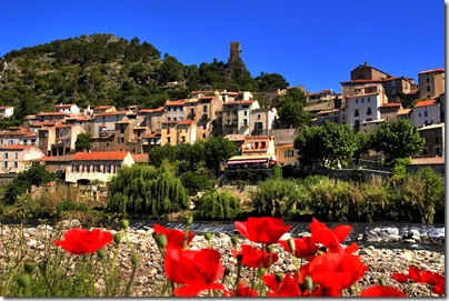 Roquebrun.River.Poppies