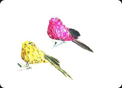 birdstwo