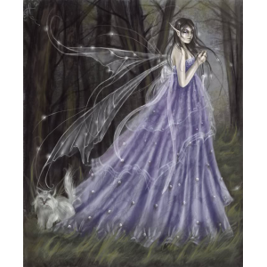 The Fairy Witch Of Clonmel Cover