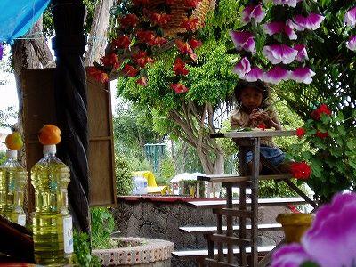 ハニッツィオ島の食堂