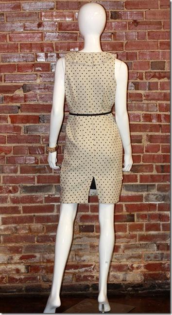Eva Franco Chelsea Dress B