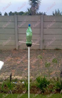 Soda-bottle-bird-feeder