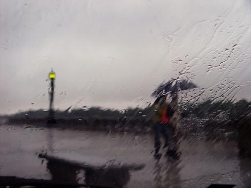Rain on the Waterfront. Photo: Horacio Iannella