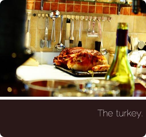 turkey00