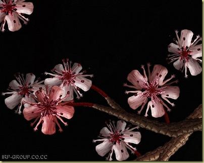 flores humanas 13