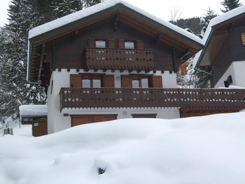 Location grands chalets les carroz - Garage du ski les carroz ...