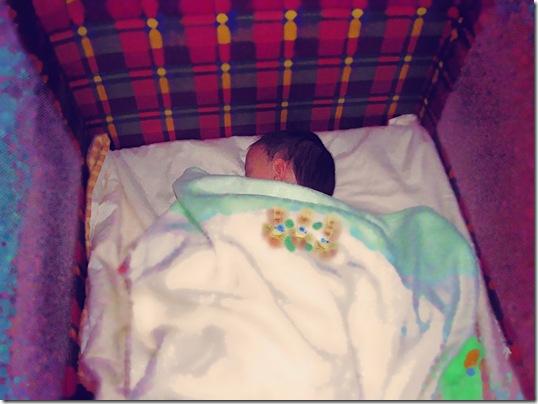 Maisie sleeps 1