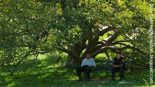 Police officers relax under a shady tree in Costanera Sur Ecological Reserve in Buenos Aires, Argentina