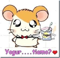yogut...tiamo