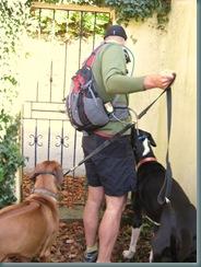 2008-10-18 Autumn Dog Walk 003
