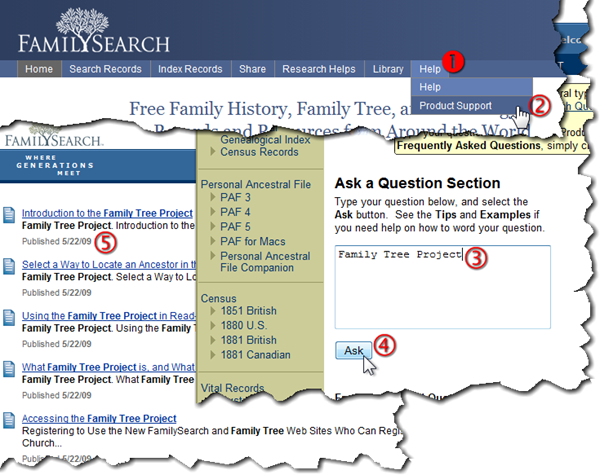 spanish family tree project