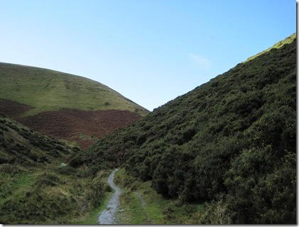 Long Mynd5