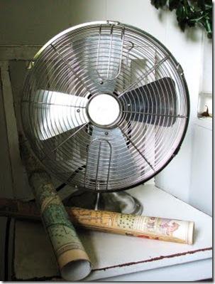 fan 019