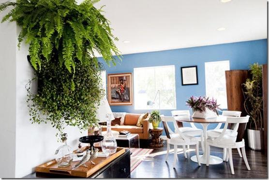 Casa de Valentina - via Apartment Therapy - samambaias