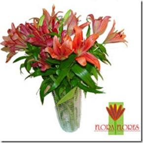Flora Flores R$95,00